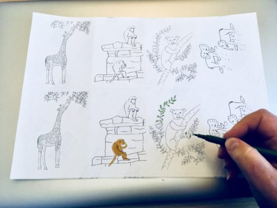 Colouring stickers with wild animals to colour in, photogrpahed with a felt tip pen