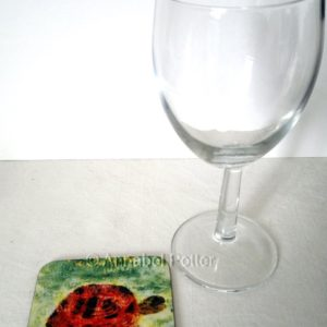 Tortoise coaster photographed with a glass