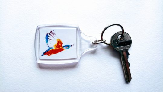 Flying kingfisher keyring photographed with a key