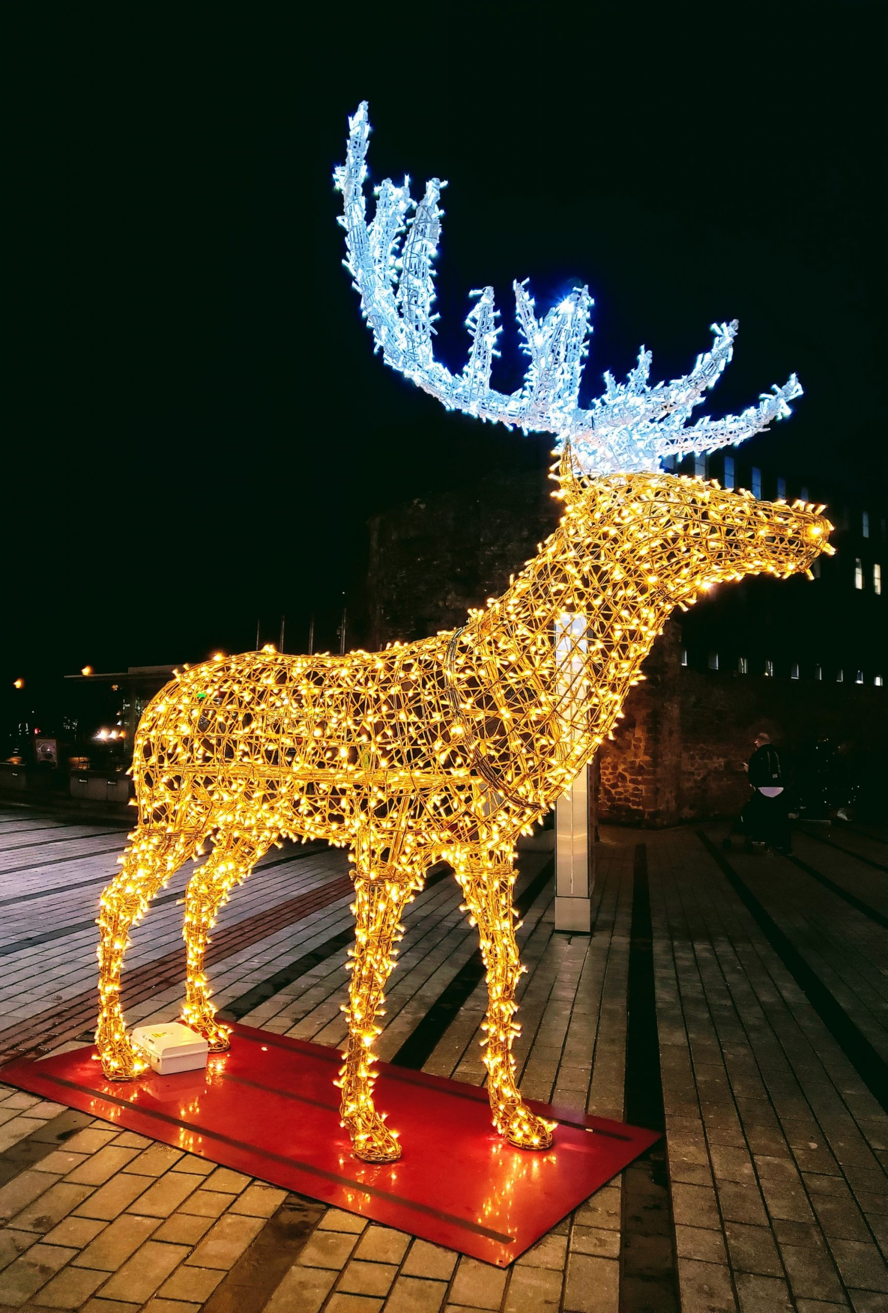 Lighted Christmas Reindeer Decoration