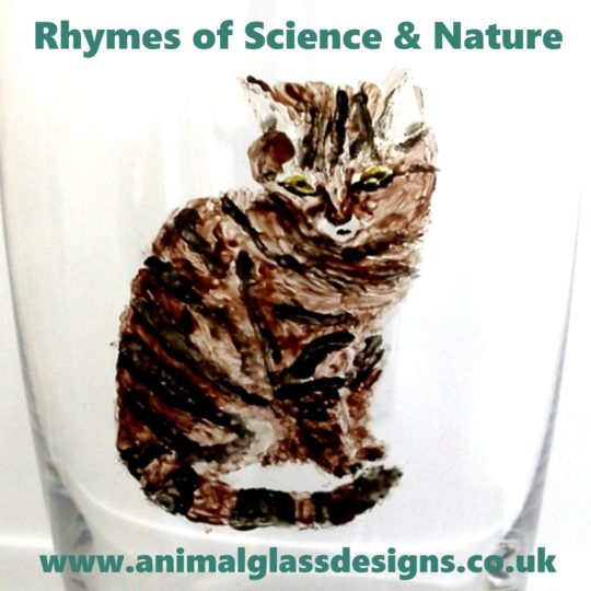 New podcast name Rhymes of Science and Nature with my website cat logo.