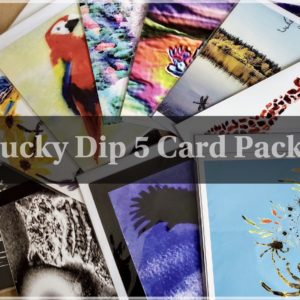 A selection of Animal and nature art cards for a lucky dip bargain 5 greeting cards pack.