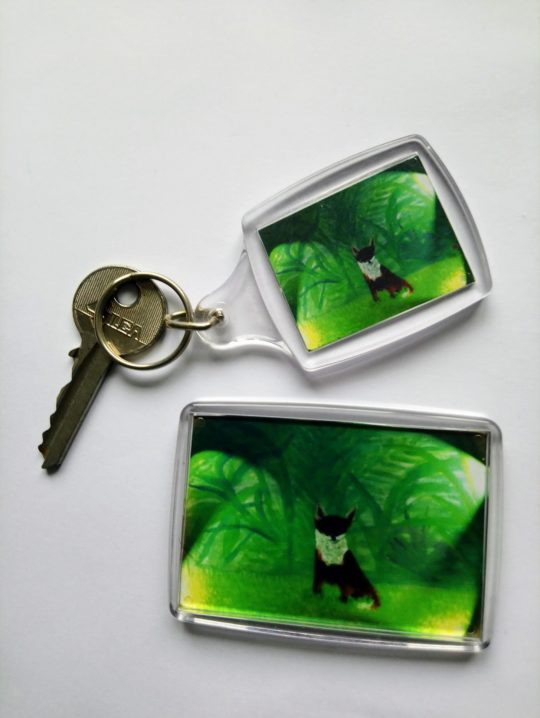 Green Key ring, frdige magnet small gift set with foxes